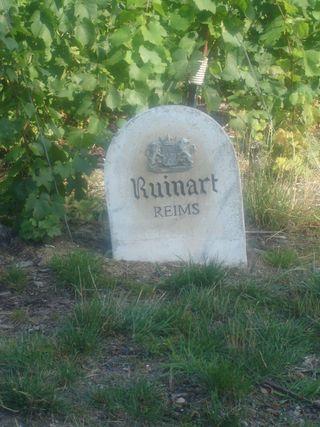 Borne Ruinart