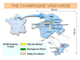 Champagne vineyards map